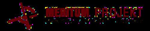 Meritum Projekt